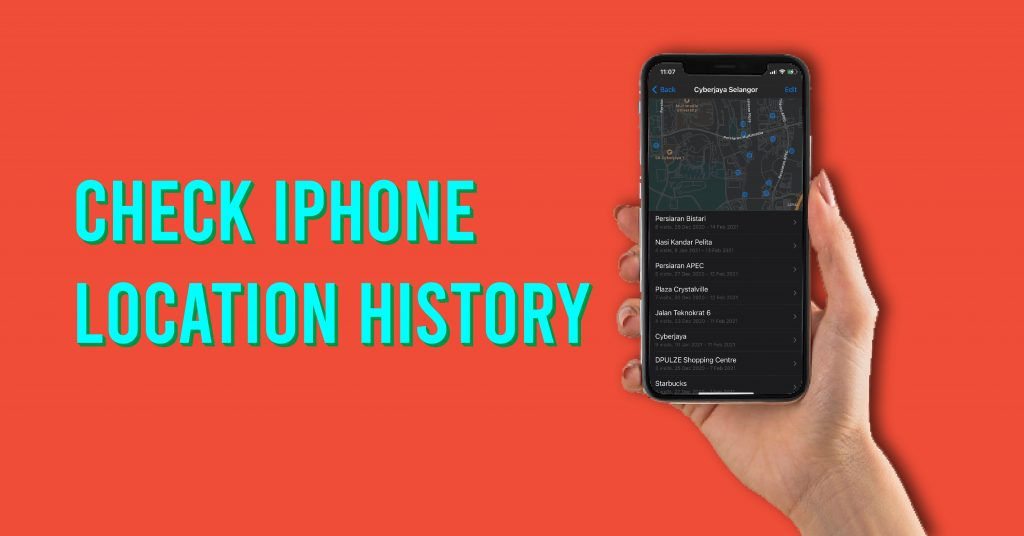 check iphone history